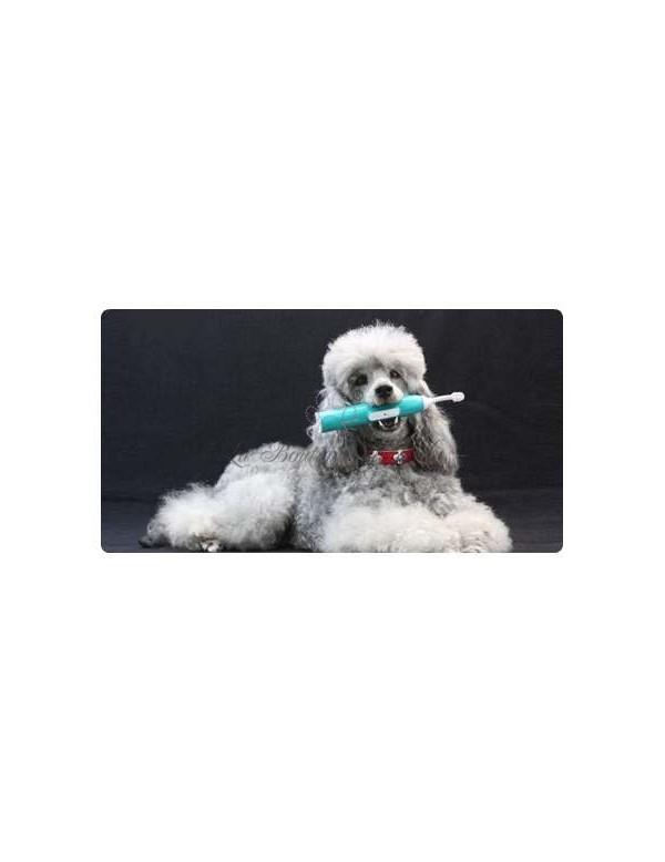 Schema Elettrico Ultrasuoni Per Cani : Valigetta trucco spazzolino ultrasuoni