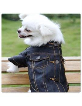 Giubottino in Jeans