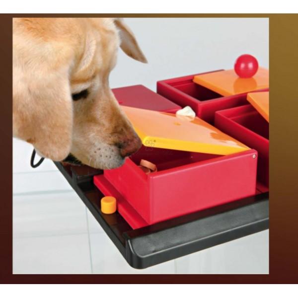 Poker Box 1 Gioco strategico