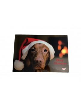 Sottociotola Dog Christmas