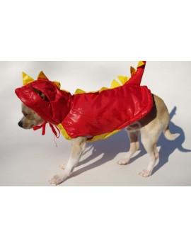 Costume Draghetto carnevale