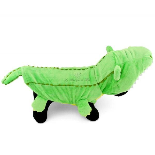 Costume Coccodrillo