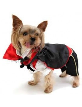 Costume Conte Dracula carnevale