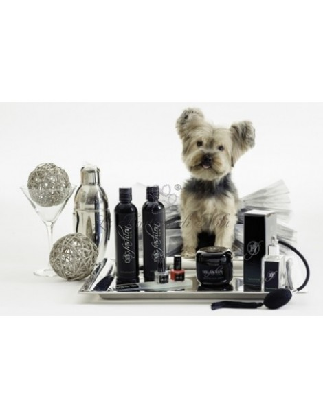 Kit Lusso Dog Fashion SPA