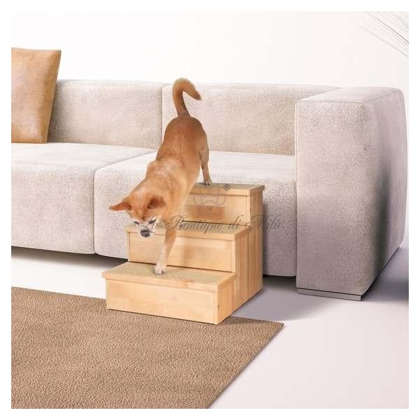 Scaletta Pet Stair