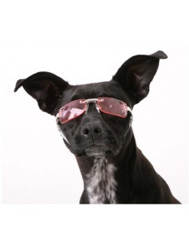 Occhiali da Sole Doggles K Pink