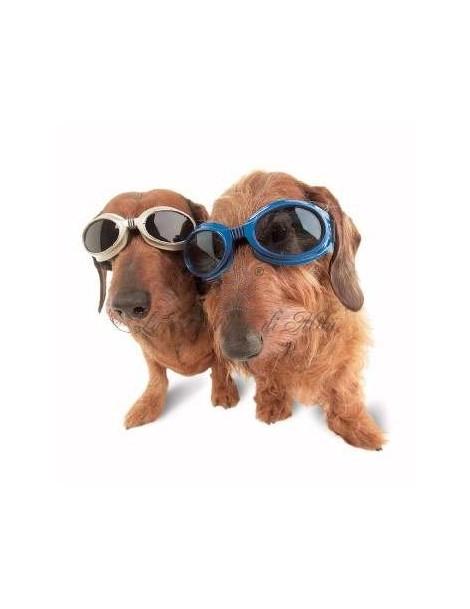 Occhiali Doggles ILS