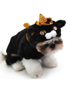 Costume Black Cat carnevale