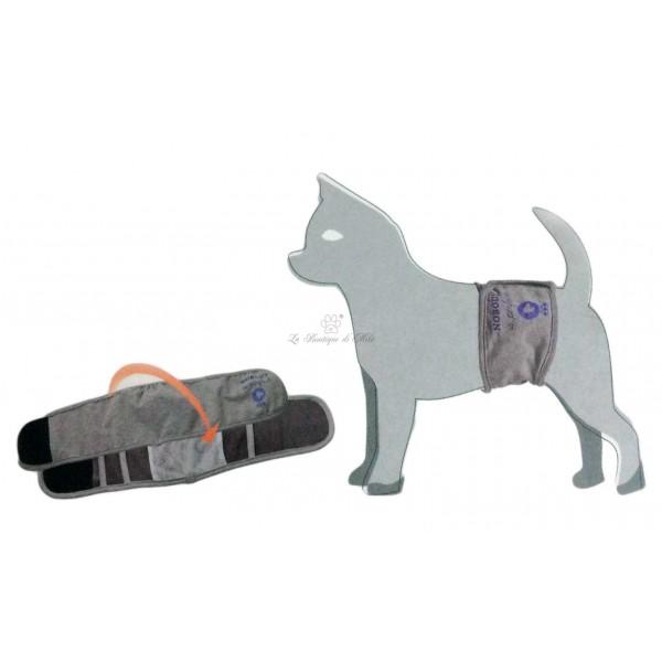 Fascia Igienica cane  Bon Ton Easy